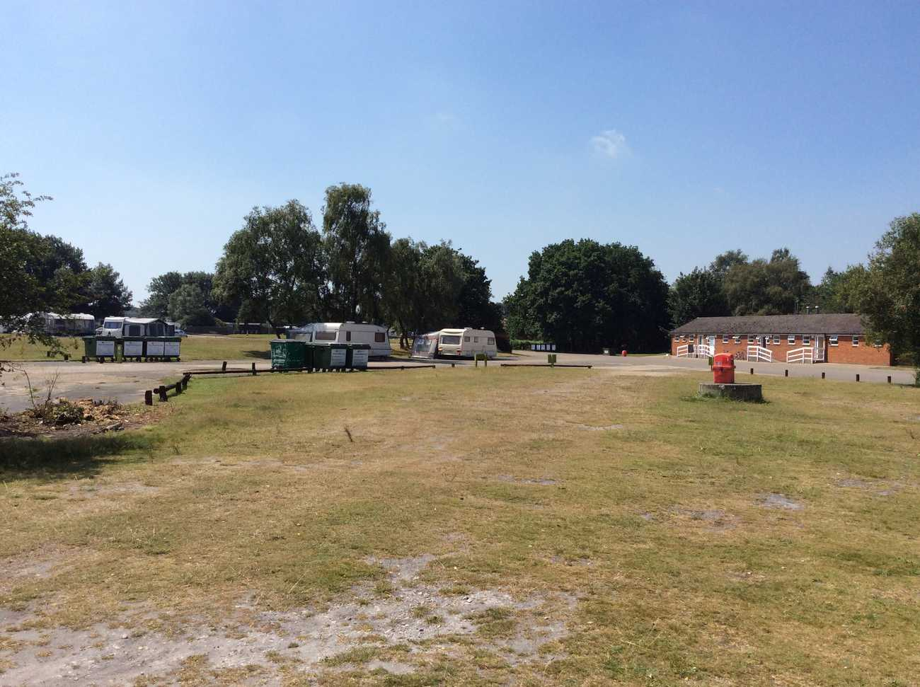 The New Forest - Holmsley campsite
