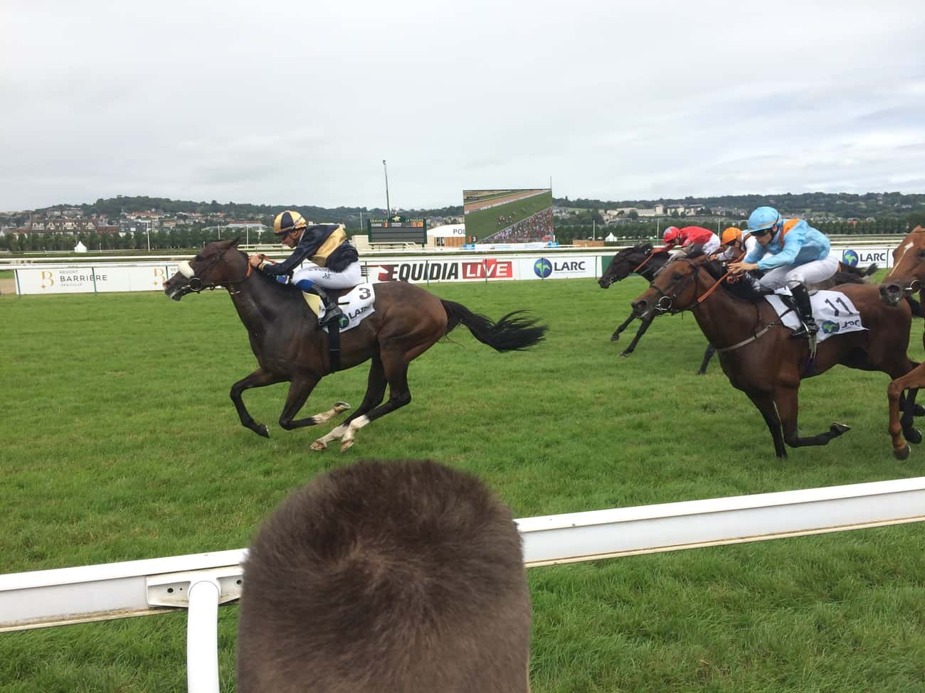 Deauville - horse racing 2