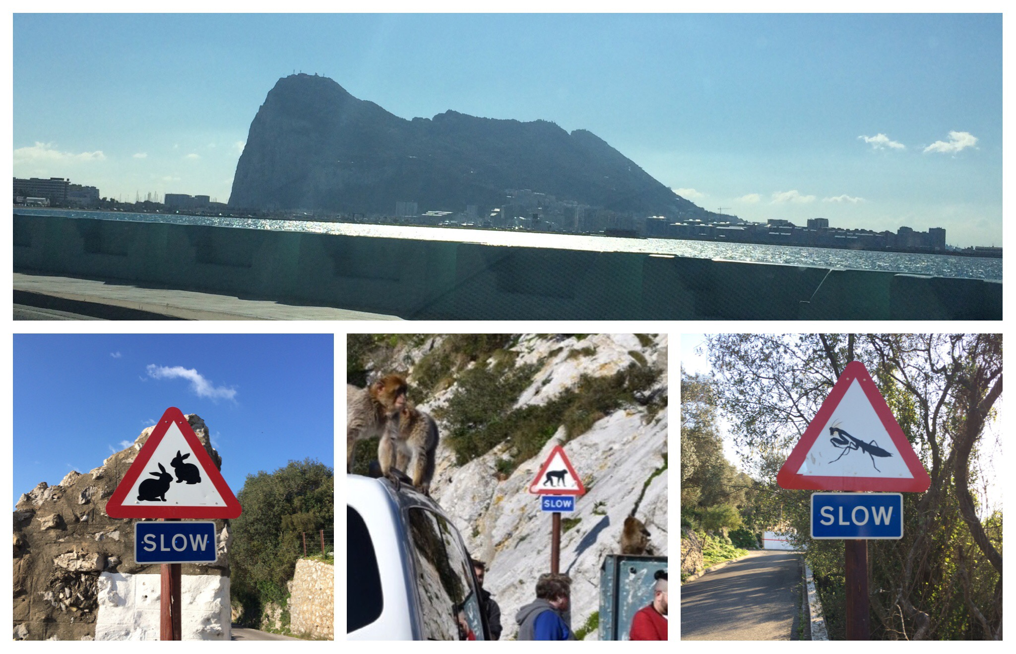 Gibraltar - unusual road signs