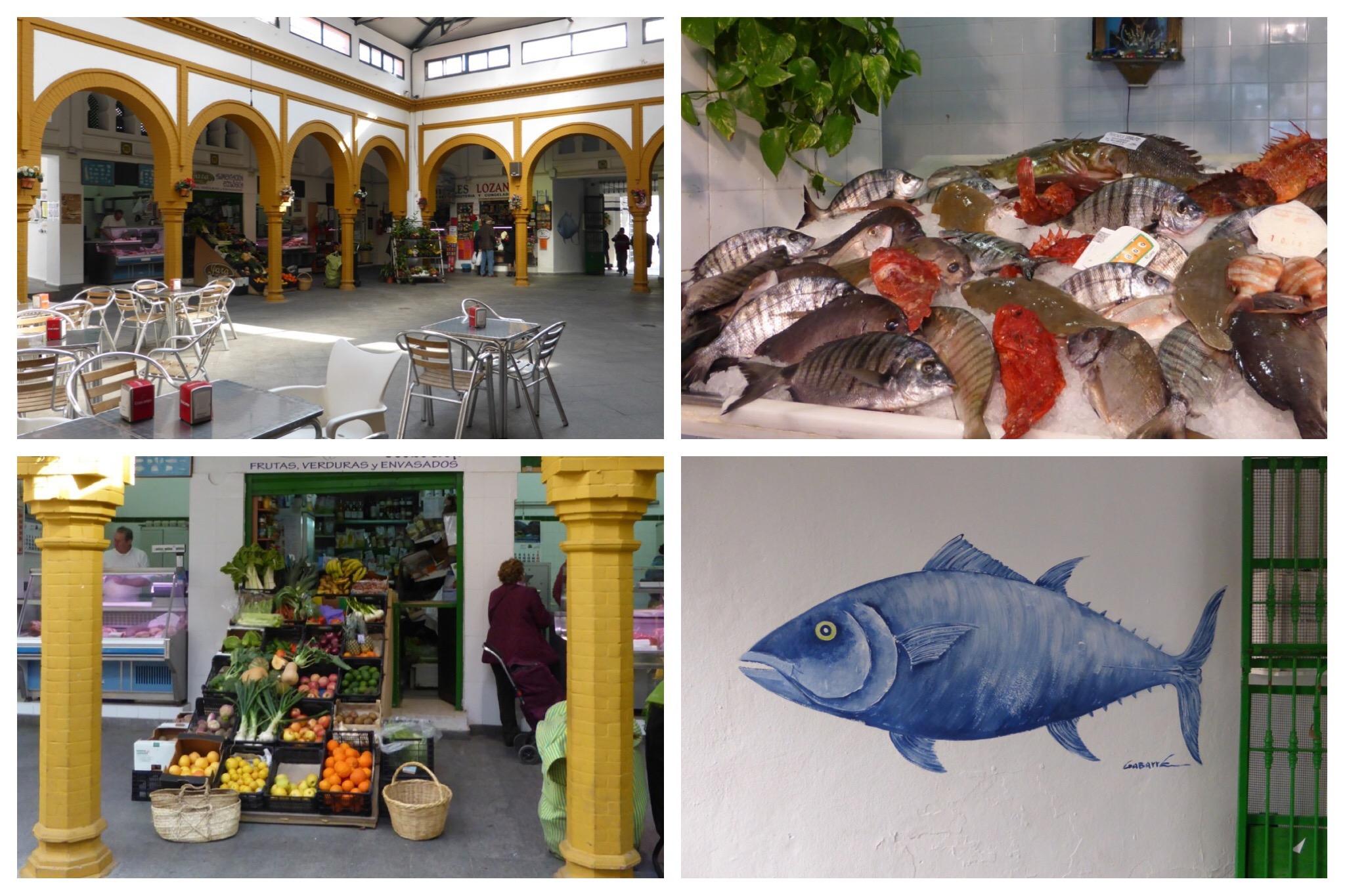 Tarifa - market fish tuna
