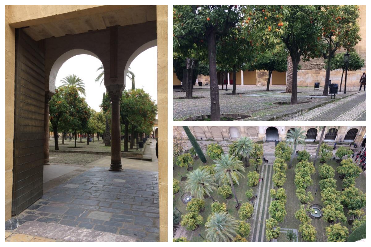 Córdoba Mesquita Mosque-Church Orange tree courtyard