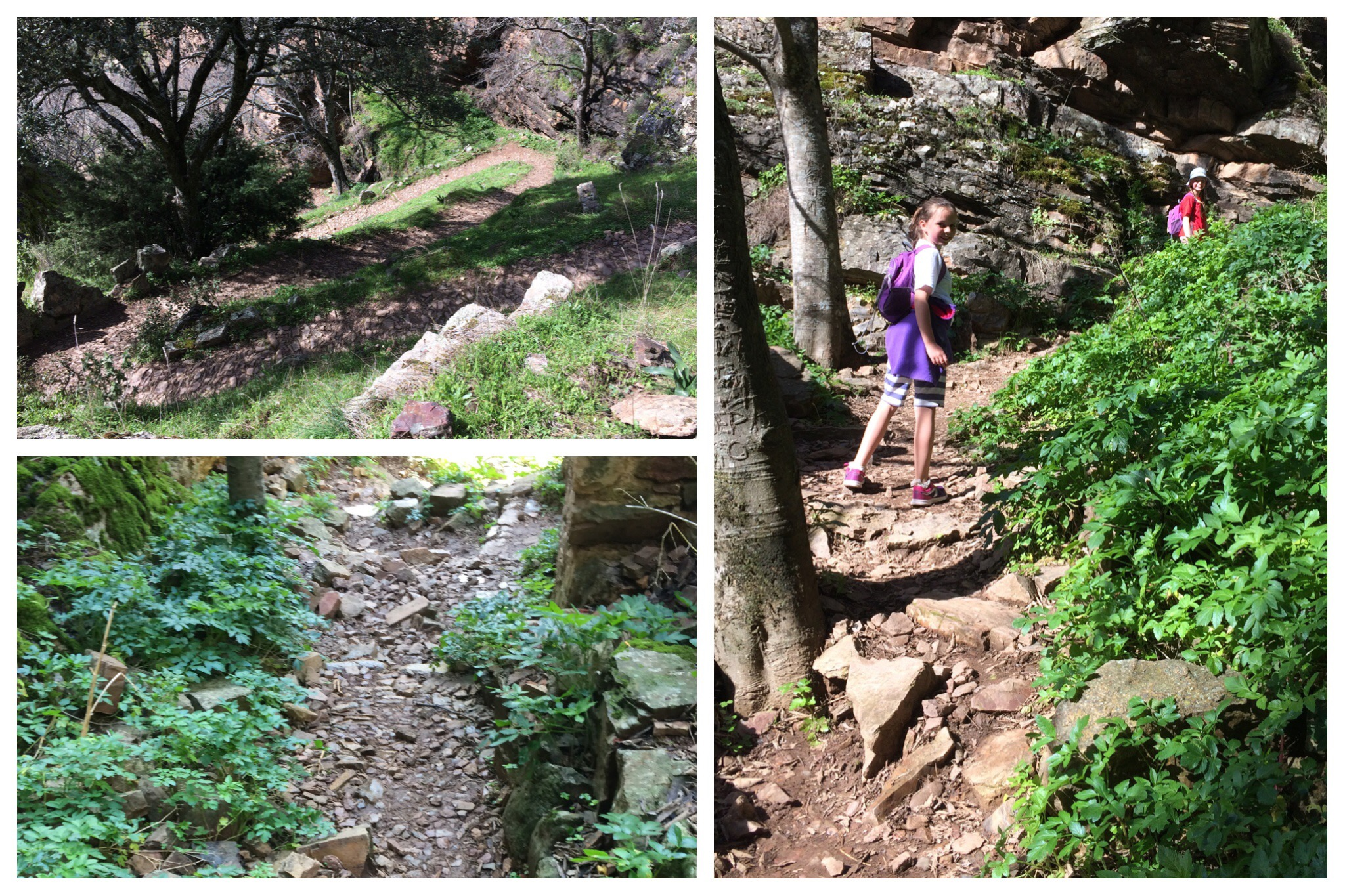 Cimbarra waterfall walk path down to base